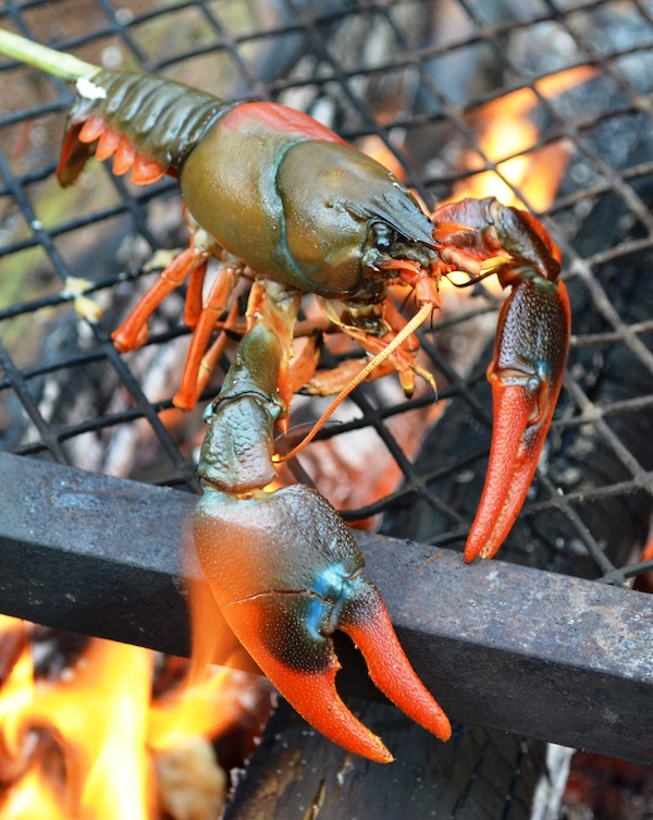 Cray Fish on the fire